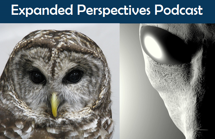 Real MIB Encounters/Owls and Abductees – Expanded Perspectives